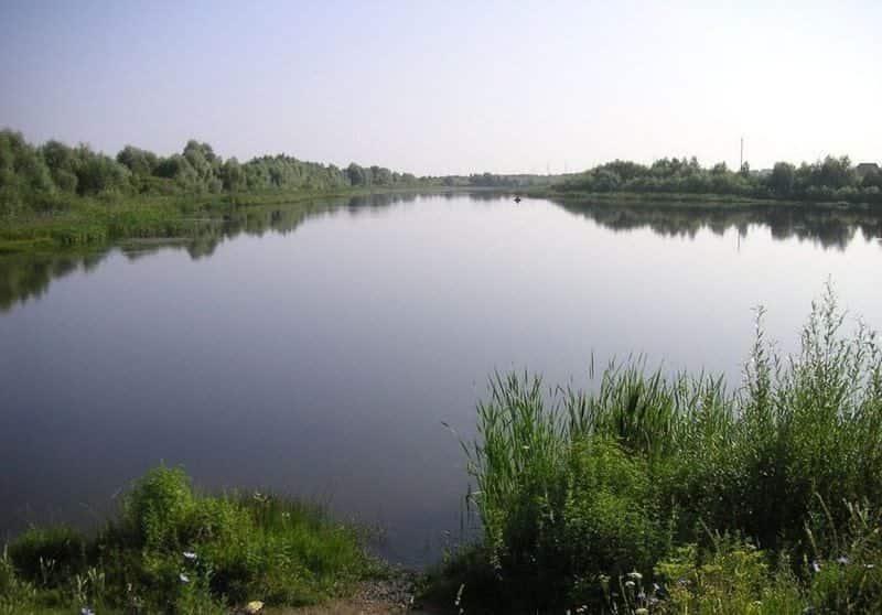 Платная рыбалка в пруду Бабынино